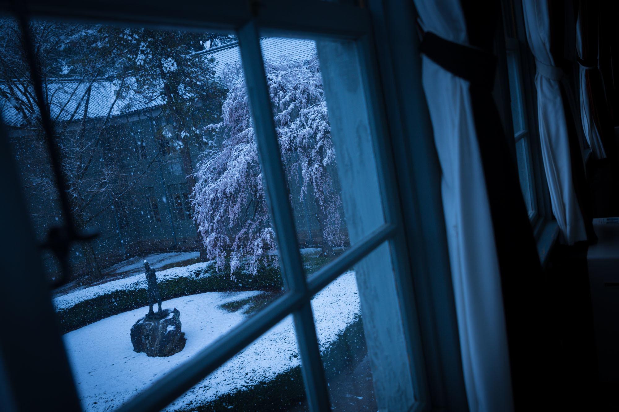 なごり雪の窓辺~あがたの森の枝垂桜~_d0349418_20531346.jpg