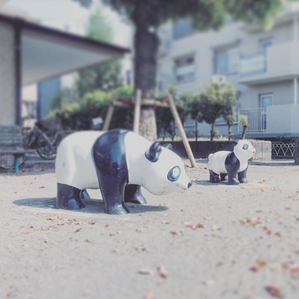 杉並区井草 / iPhone 8_c0334533_20425697.jpg