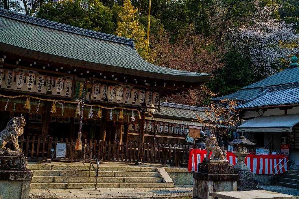 2019京都桜~熊野若王子神社_e0363038_16311163.jpg