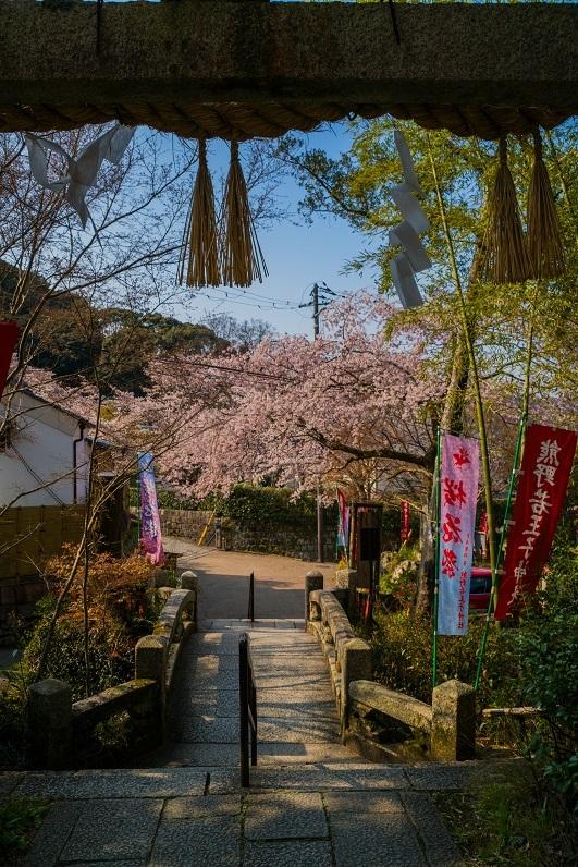 2019京都桜~熊野若王子神社_e0363038_16311906.jpg