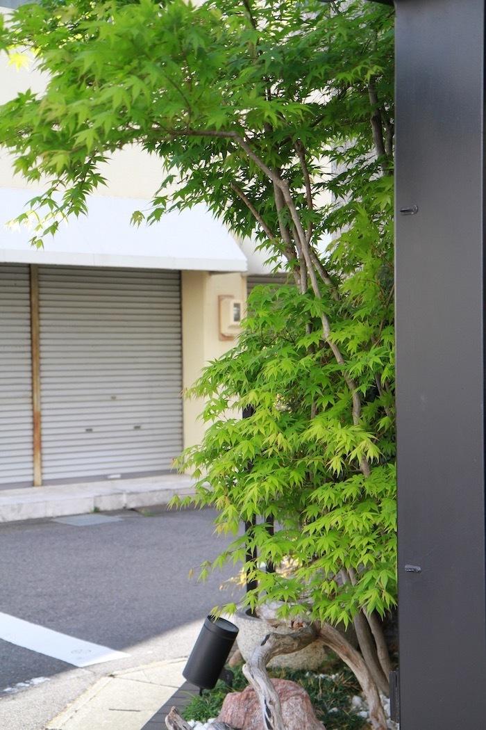 以前と現在の看板と坪庭の仕切り_d0335577_06423268.jpg