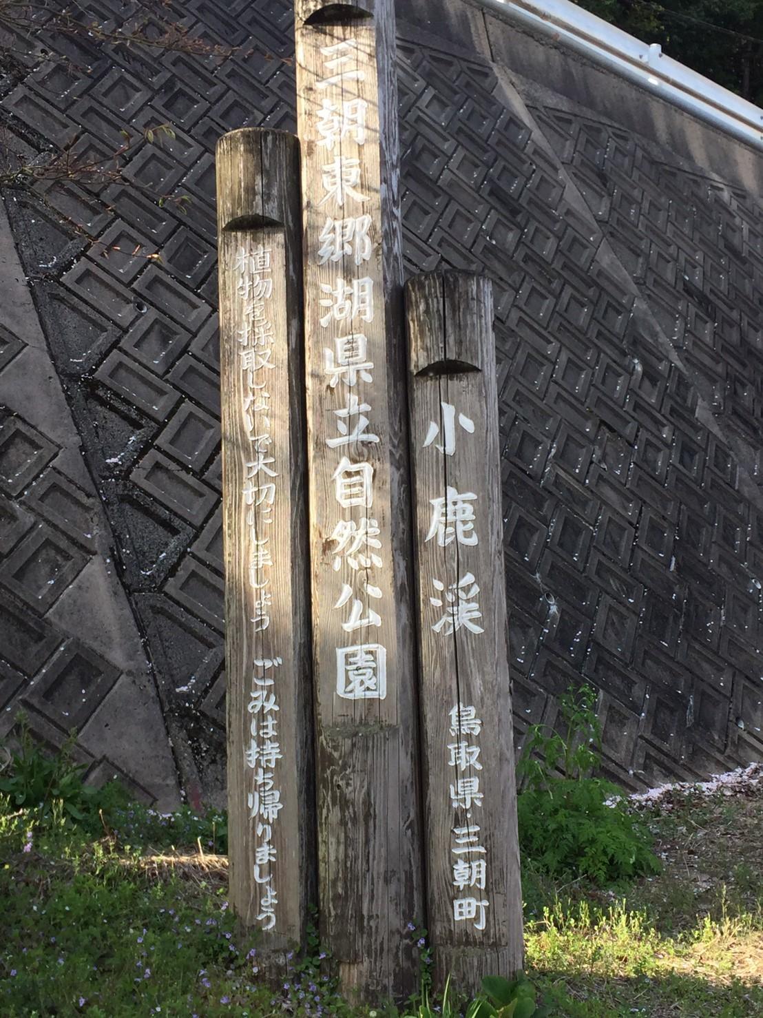 三朝町神倉の源平桃・冠岩・小鹿渓_e0115904_21211352.jpg