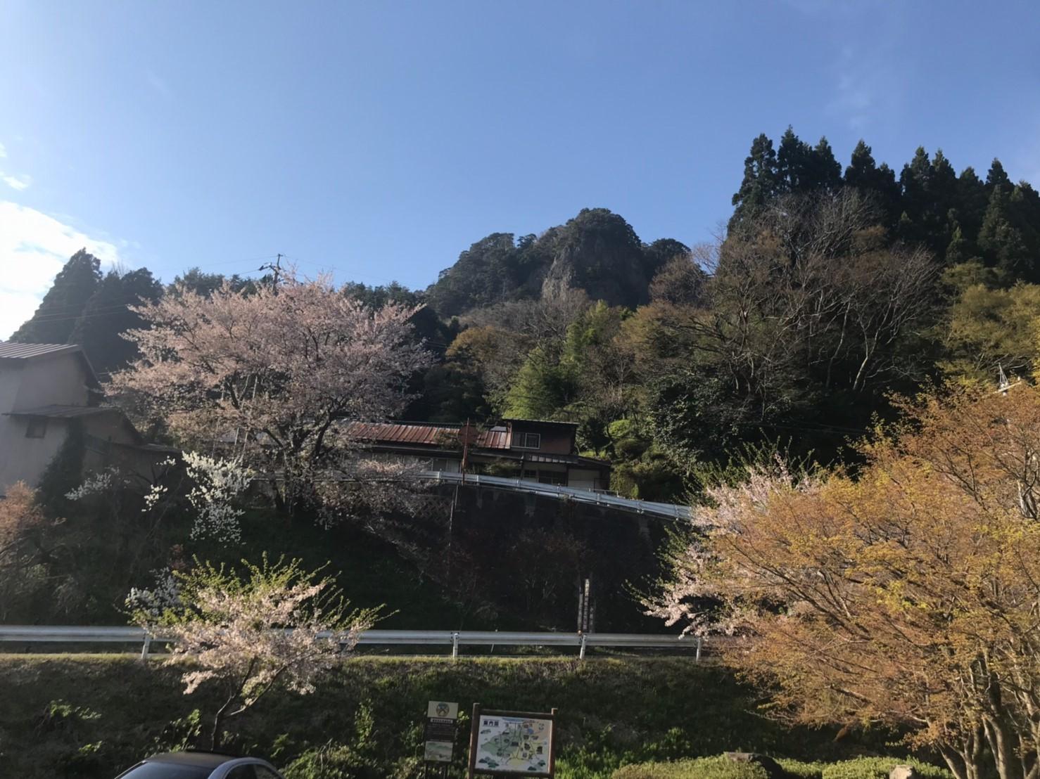 三朝町神倉の源平桃・冠岩・小鹿渓_e0115904_21292586.jpg