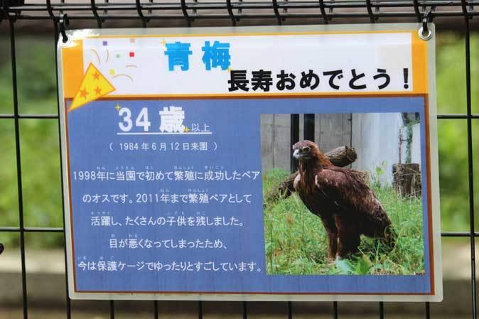 長寿動物と新しい生命(多摩動物公園 September 2018)_b0355317_21521818.jpg