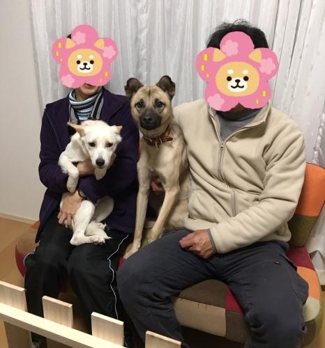 シアワセ報告  〜あーちゃん〜_b0207320_15354274.jpeg