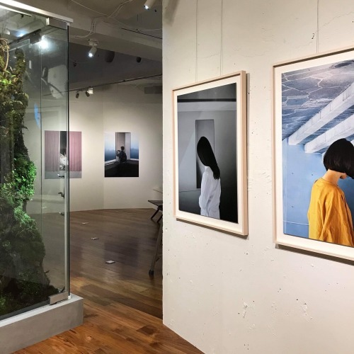 Transparent Mirror - Miki Kitazawa × So Mitsuya × Yosuke Yajima_b0132059_17432155.jpg