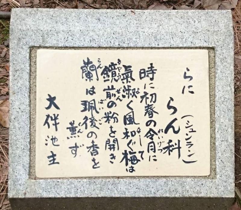 タケノコ_b0328361_21494024.jpeg