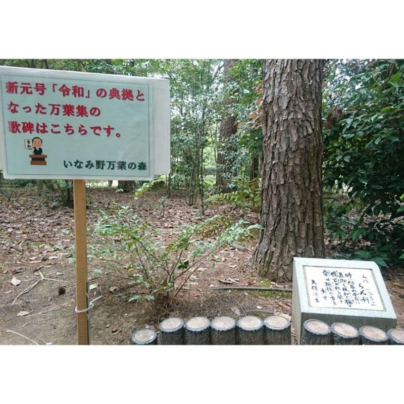 タケノコ_b0328361_21500371.jpeg