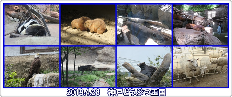 a0052666_0205959.jpg