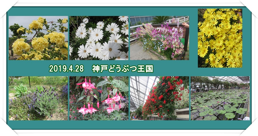 a0052666_0244520.jpg