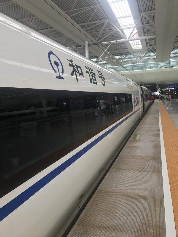 新幹線で杭州ー上海を移動_c0366777_13370779.jpeg