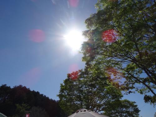 陶炎祭(ひまつり)4日目、今日で折り返しです!_f0229883_19442803.jpg