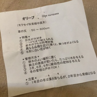 ☆夙川サロンでのいちにちめ_d0035397_00253424.jpeg