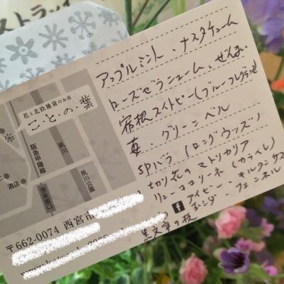 ☆夙川サロンでのいちにちめ_d0035397_00263468.jpeg