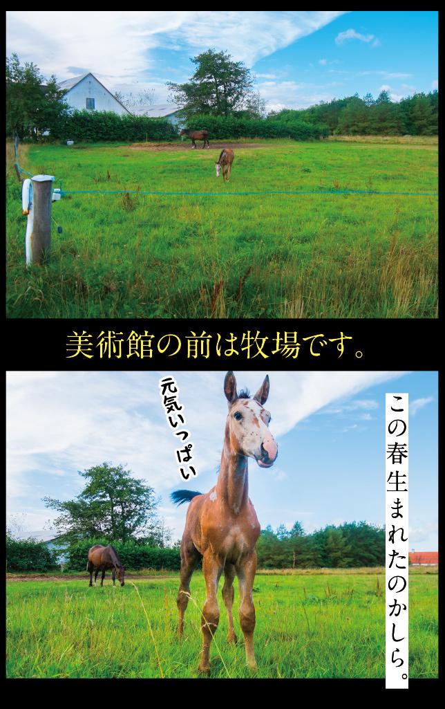 a0358016_12261666.jpg
