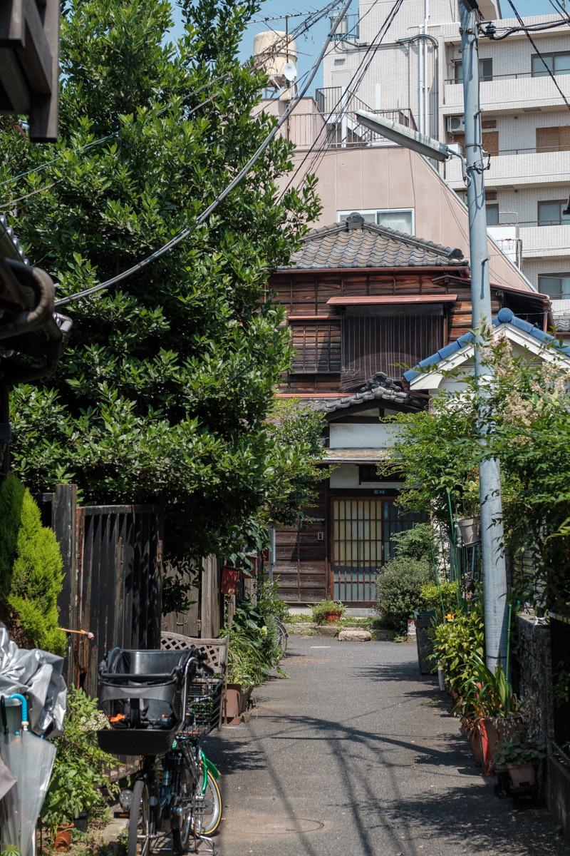 日暮里~上野  カメラおやじのスタンダード散歩_b0061717_23315936.jpg