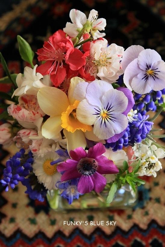 庭の小さなブーケ** (4月17日)_c0145250_11512125.jpg