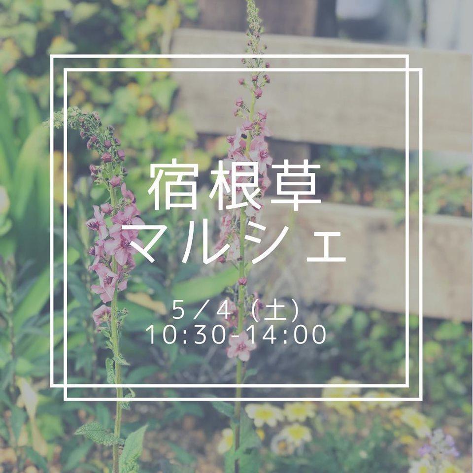 f0220152_19523937.jpg