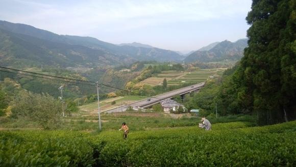 茶畑からの風景_e0173655_19394505.jpg