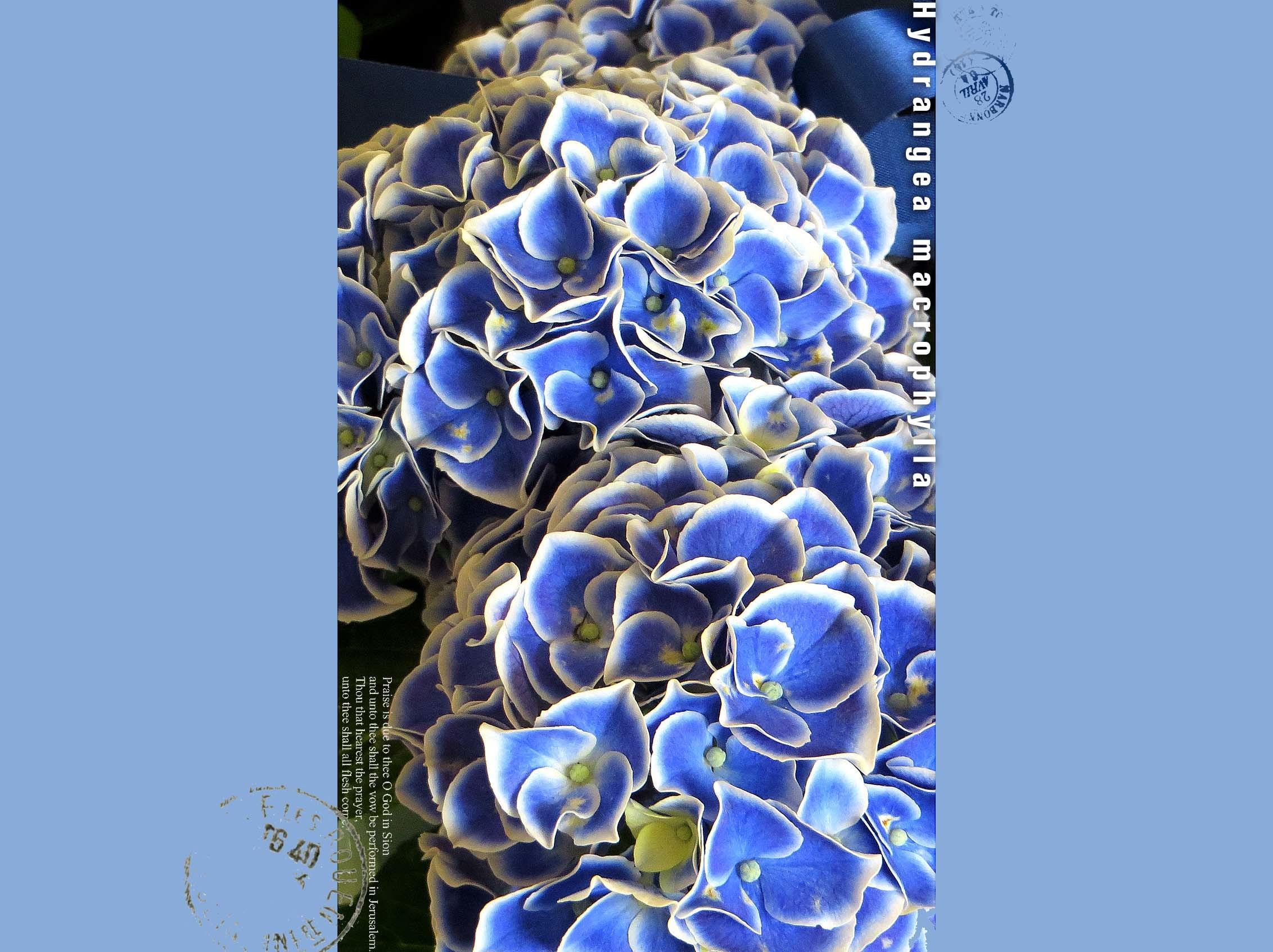f0198771_23540684.jpg