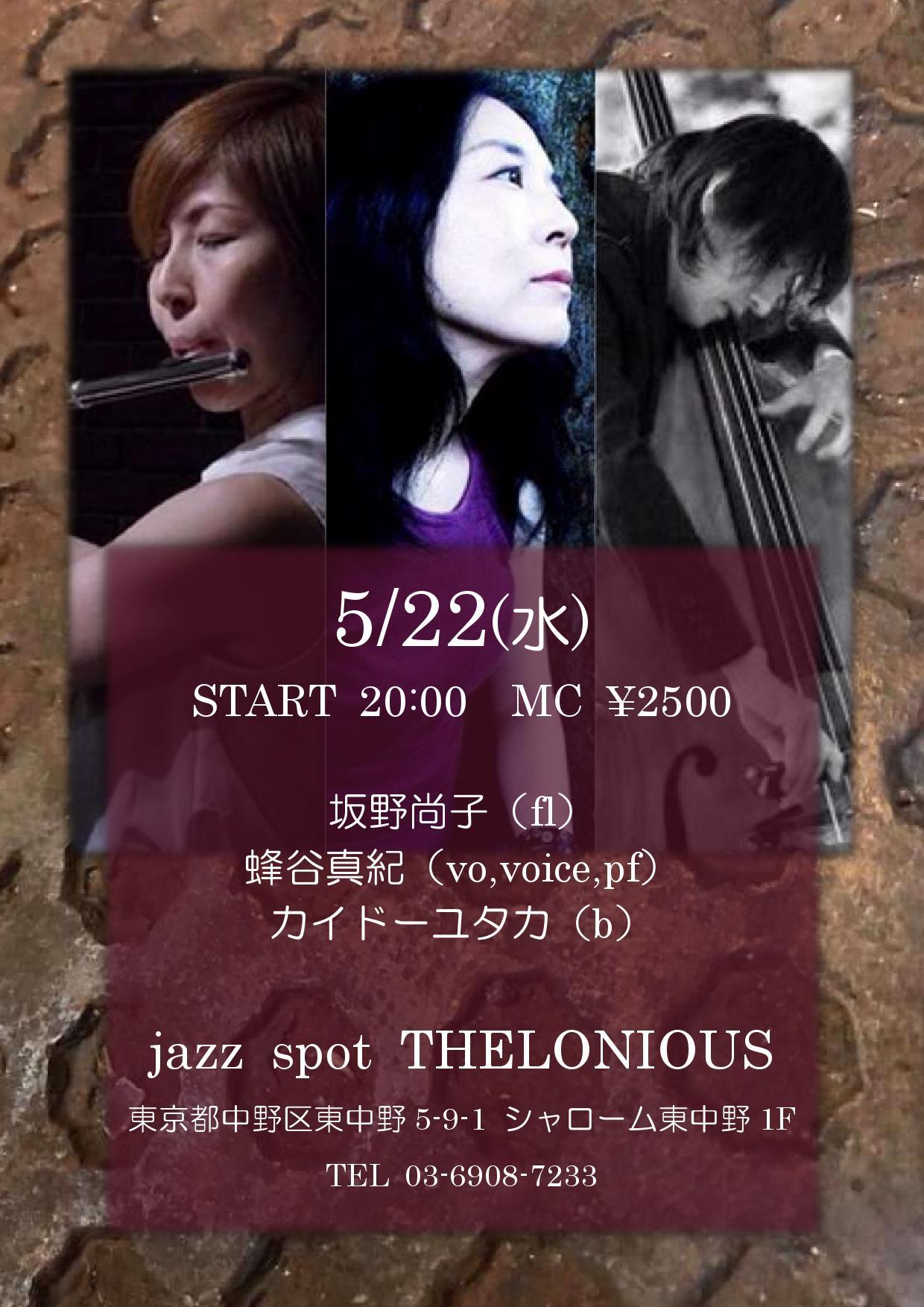 蜂谷真紀 Maki Hachiya 2019:5月~6月 live schedule_d0239981_16291523.jpg