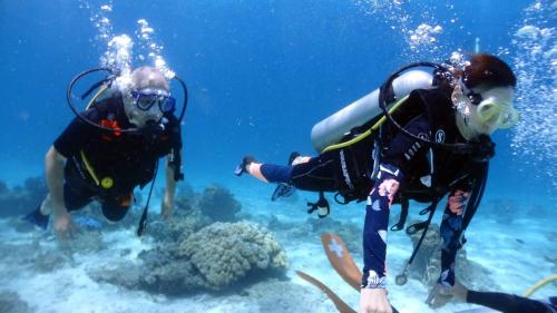 ラチャヤイ島体験ダイビング(*^_^*) FROM北海道_f0144385_18052234.jpg