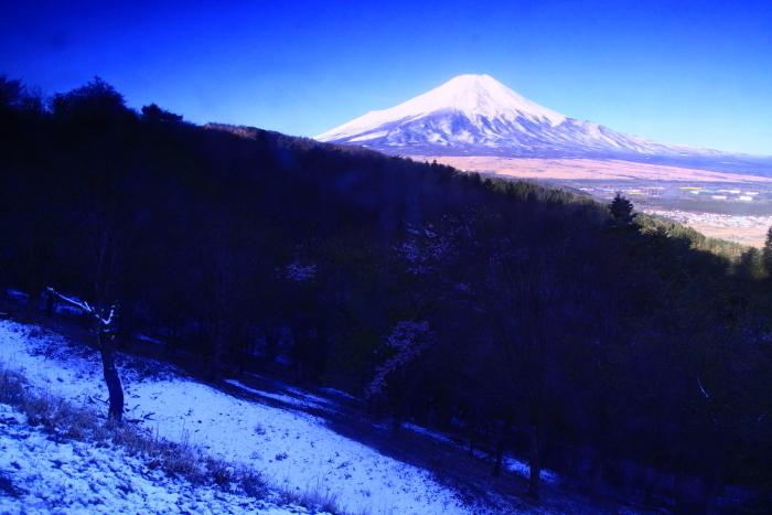 31年4月の富士(33)二十曲峠の富士_e0344396_21110642.jpg