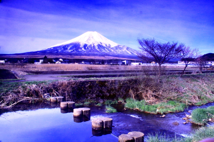 31年4月の富士(34)忍野新名庄川の富士_e0344396_21355019.jpg