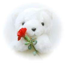誕生日に感謝のメッセージ_d0041400_10302483.jpg