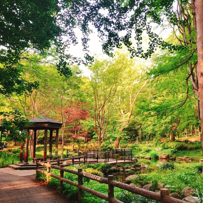 林試の森公園_d0138811_09384831.jpeg