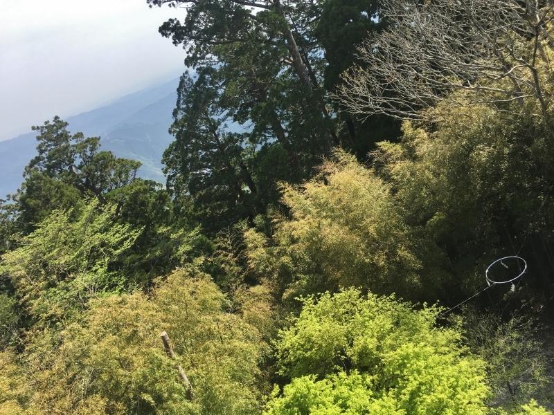 今年もこの日は秋葉山へ_b0220318_14015593.jpg