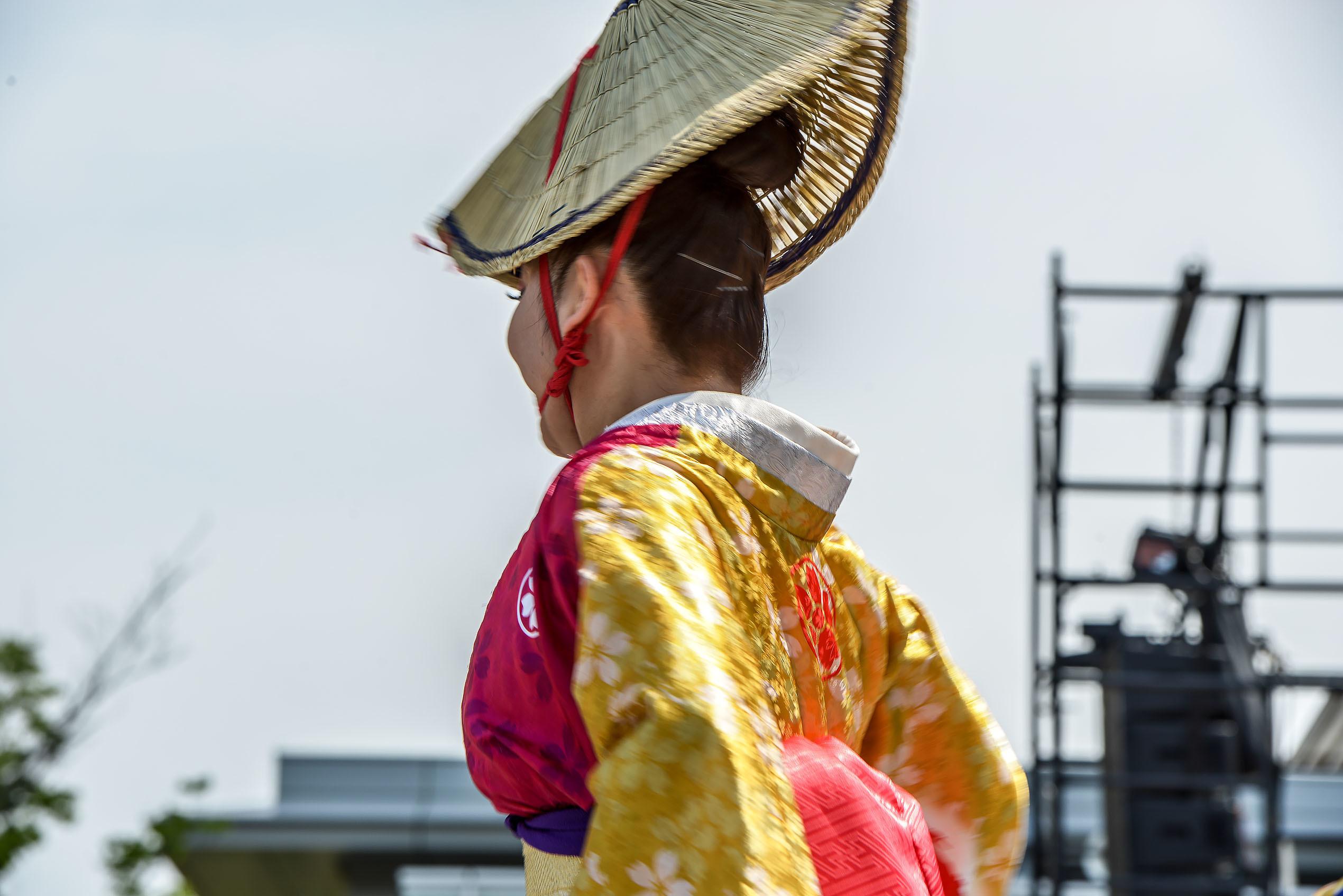 四国の祭り 2019 今年も元気よく_d0246136_00020722.jpg