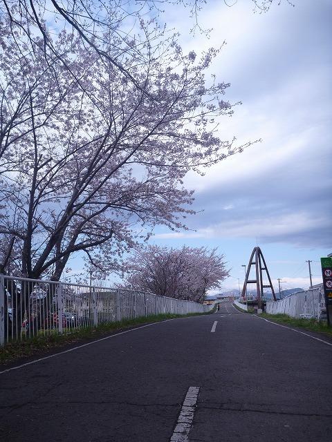 【5/3(金・祝)お花見ブレックファストツーリング!】 -ご報告_b0195144_14344076.jpg
