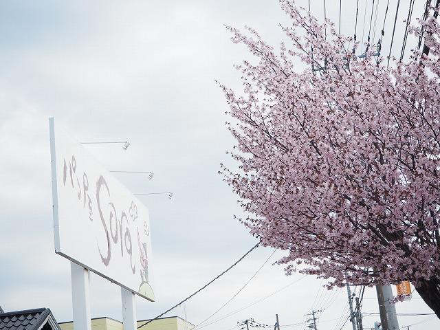 【5/3(金・祝)お花見ブレックファストツーリング!】 -ご報告_b0195144_14344143.jpg
