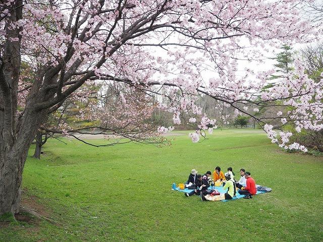 【5/3(金・祝)お花見ブレックファストツーリング!】 -ご報告_b0195144_15405402.jpg