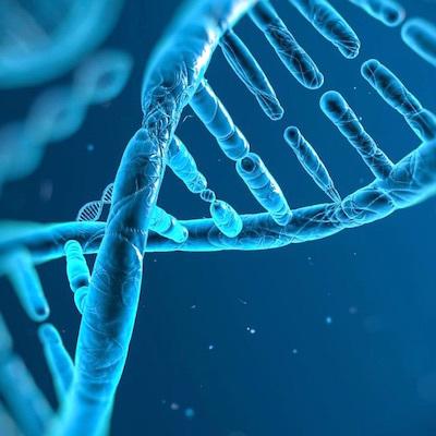 青い遺伝子の記憶/Blue Genes Memory_c0109850_13431760.jpg