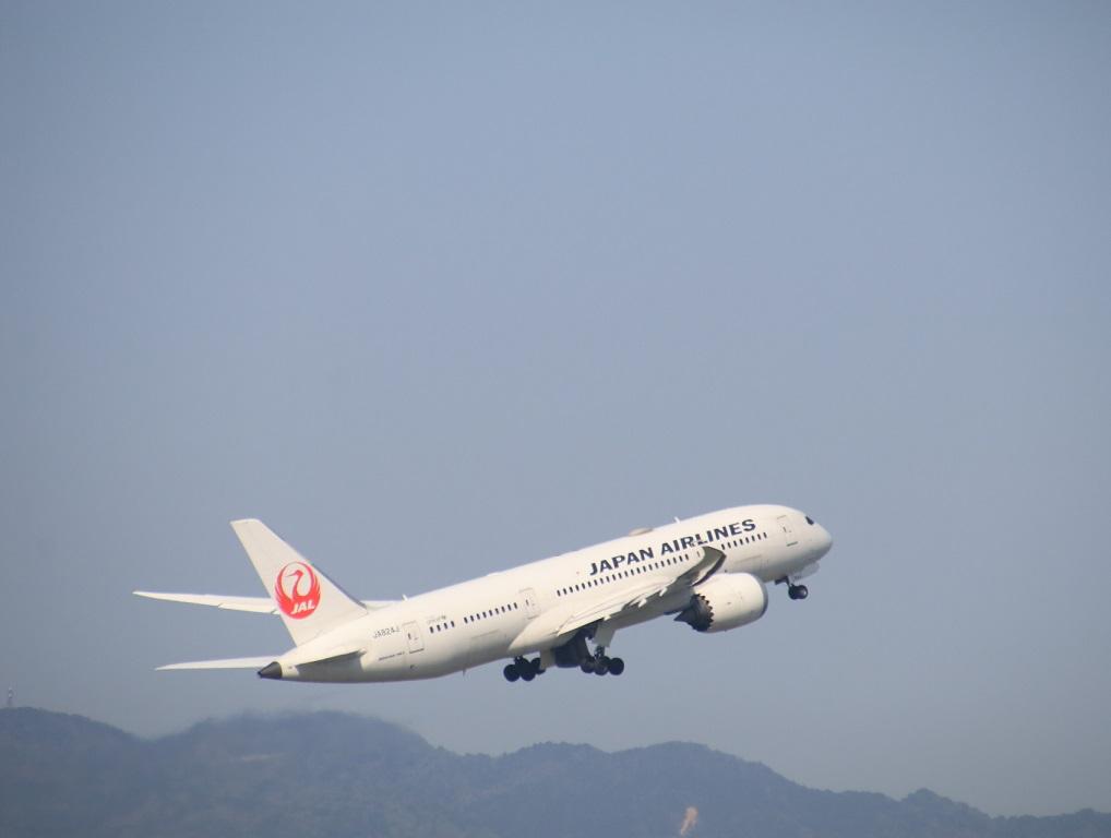 JAL  ボーイング787-8型 伊丹空港_d0202264_2138103.jpg
