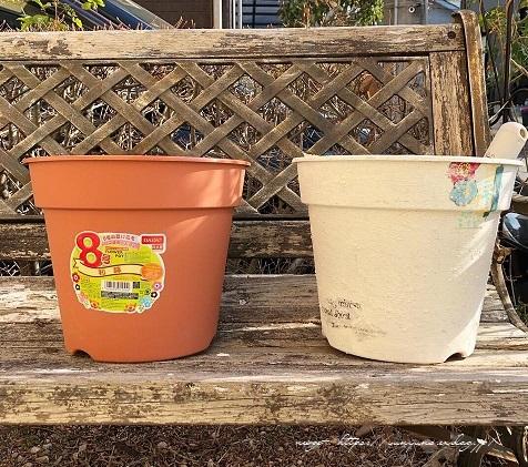 『NHK趣味の園芸』100均鉢植えプランターを漆喰風にリメイク(春の庭)_f0023333_22151022.jpg