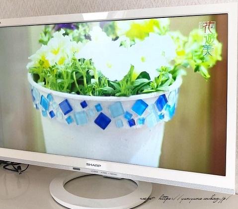 『NHK趣味の園芸』100均鉢植えプランターを漆喰風にリメイク(春の庭)_f0023333_22151416.jpg