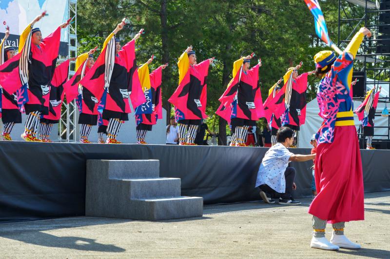 四国の祭り 2019 よさこいとらっく (ちふれ)_d0246136_23054386.jpg