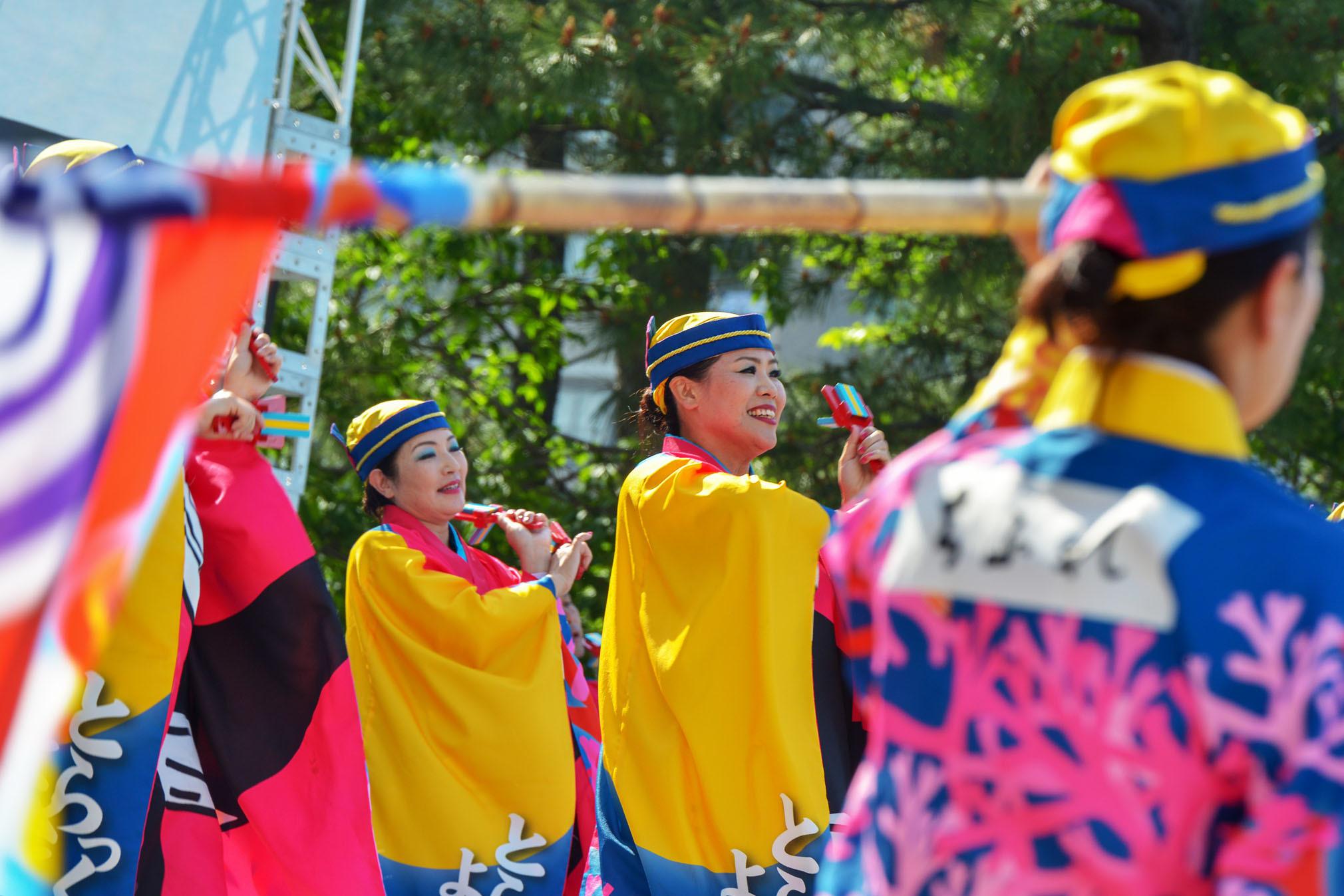 四国の祭り 2019 よさこいとらっく (ちふれ)_d0246136_23065277.jpg