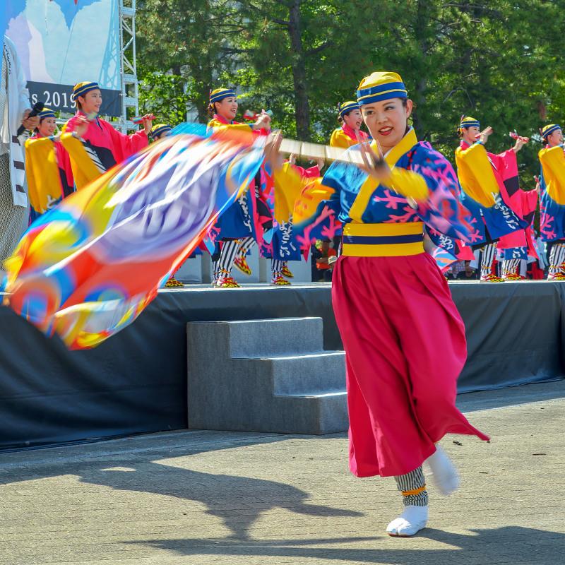 四国の祭り 2019 よさこいとらっく (ちふれ)_d0246136_23070677.jpg