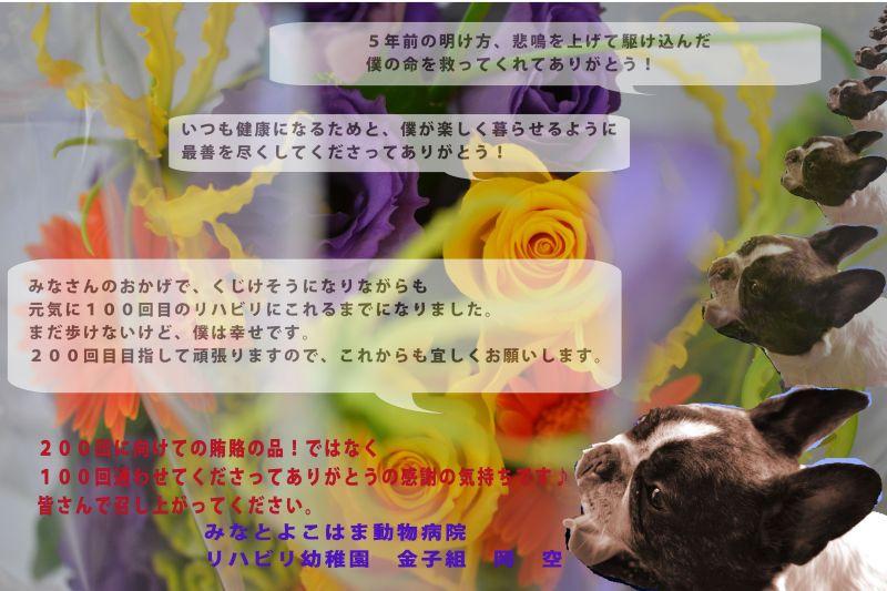 b0307951_00131118.jpg
