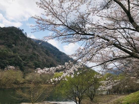 大原湖お泊り会_c0150273_15353984.jpeg