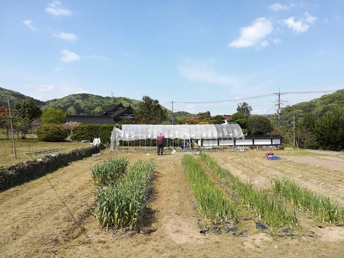 草刈り&ビニールハウスのビニールかけ!!_a0199979_19402439.jpg