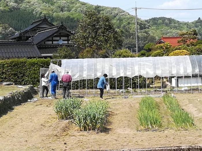 草刈り&ビニールハウスのビニールかけ!!_a0199979_19403439.jpg