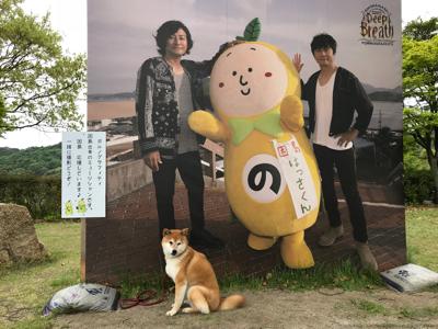 世羅チューリップ畑と大三島さんぽ_e0012580_19193287.jpg