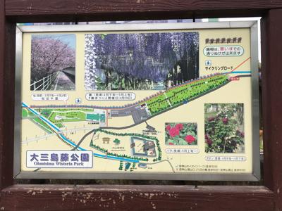 世羅チューリップ畑と大三島さんぽ_e0012580_19221086.jpg