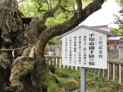 世羅チューリップ畑と大三島さんぽ_e0012580_19252631.jpg