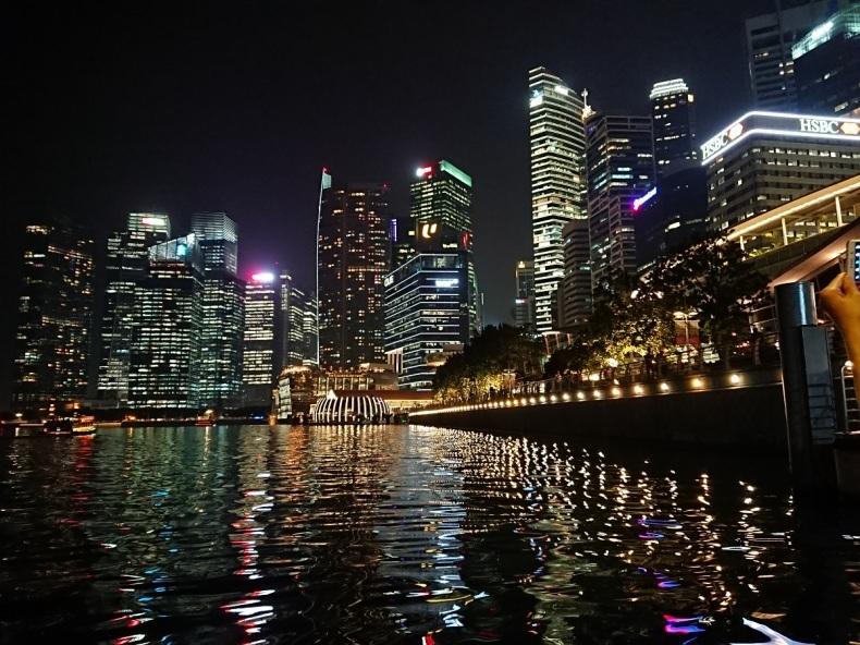 シンガポール旅行(夜景編)_d0147789_16054777.jpg